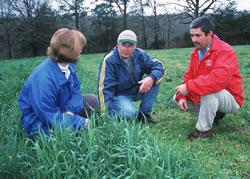 fieldwork  image